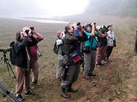 Birding at Periyar
